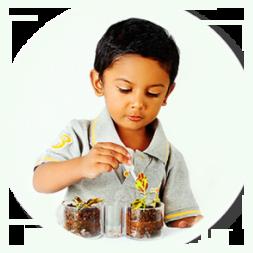 Marigold International School | Carefully Crafted Pedagogy